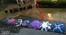 Pluvio Umbrella