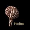 Psyco Fossil Album
